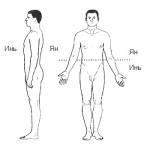 Инь-Ян и структуры тела